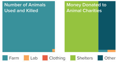 Number of animals used and killed vs. money donated to animal charity cause areas