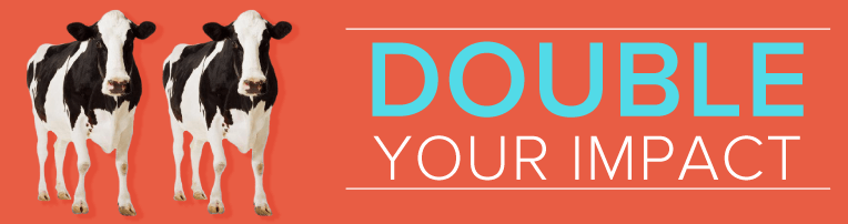 Double Your Impact Matching Funds Campaign