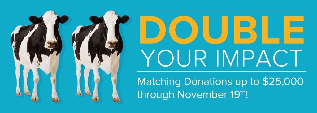 Double Your Impact Fundraiser