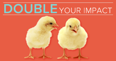Double Your Impact in 2015!