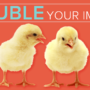 Double Your Impact Matching Campaign