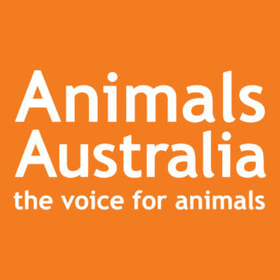 Animals Australia logo