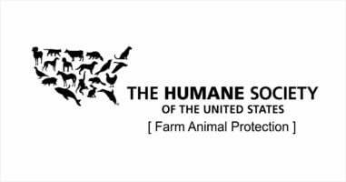 ACE's Decision to Rescind our Recommendation of The Humane Society of The United States' Farm Animal Protection Campaign