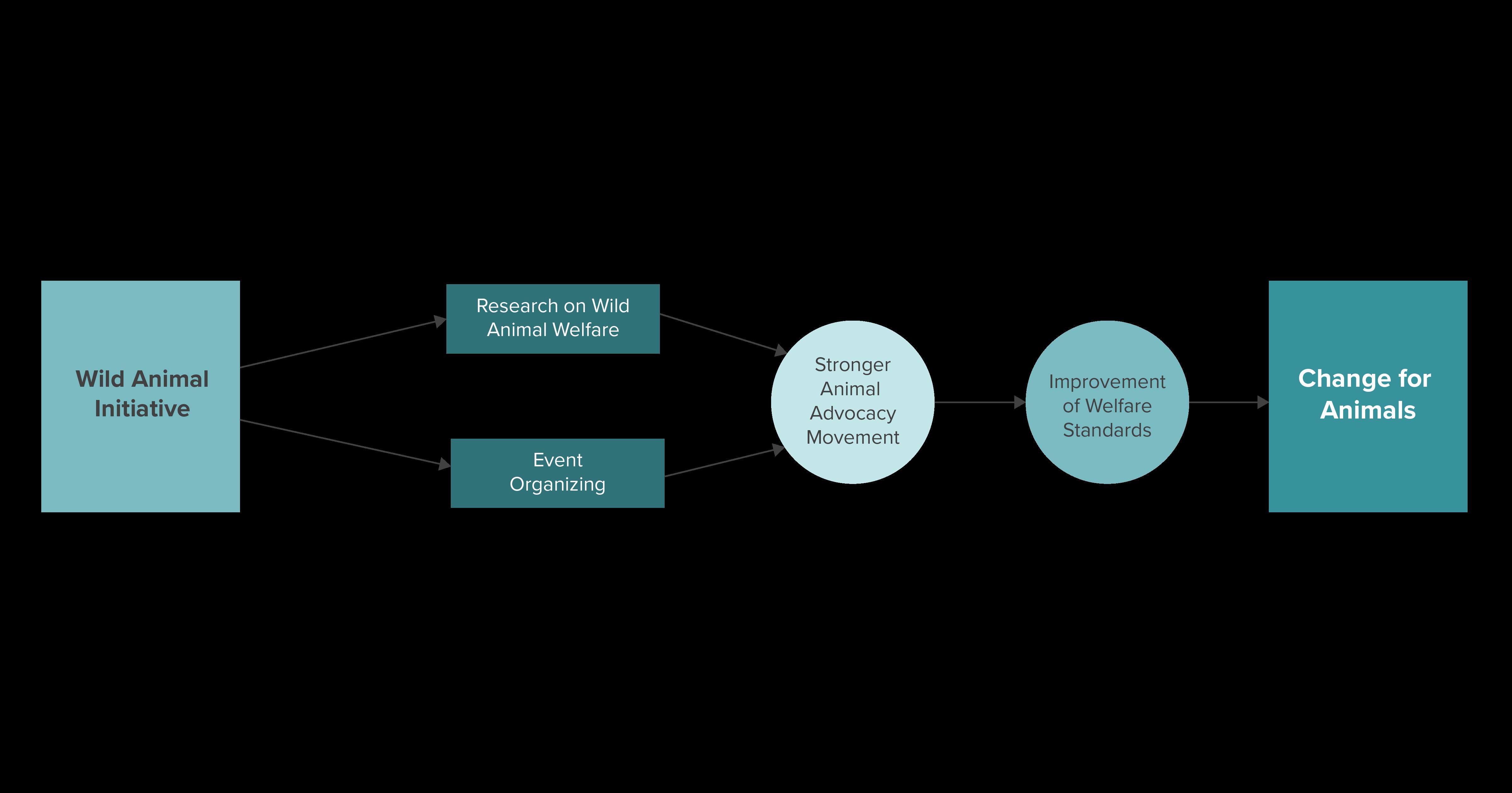2020 Theory of Change WAI